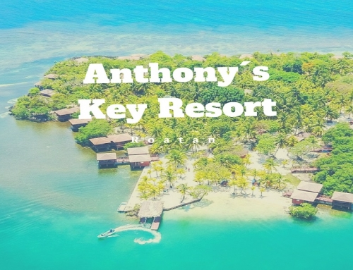 Anthony´s Key Resort