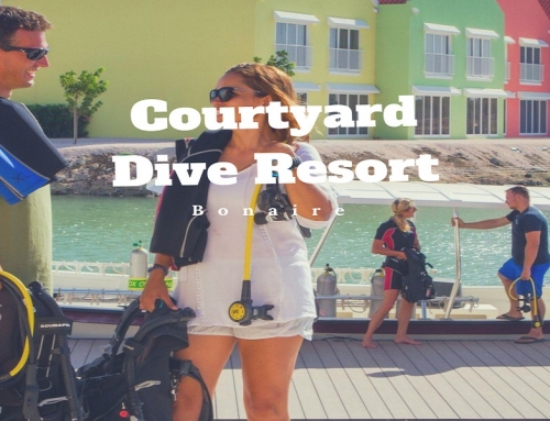 Courtyard Bonaire Dive Resort