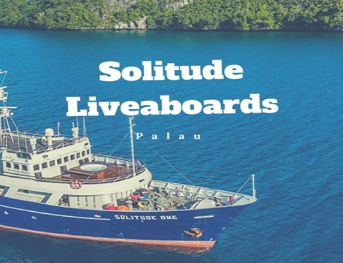 Solitude Liveaboards
