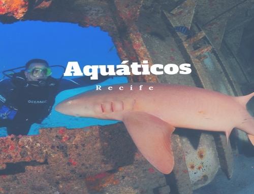 Aquáticos